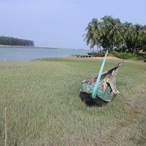 sanjay-kaul-pic